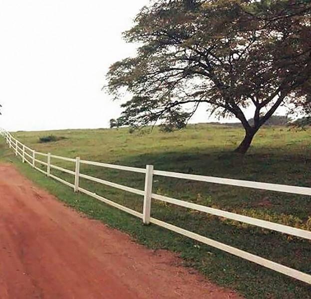 拥有一片绿油油宽阔草地的Ladang 16,经常吸引大众前来参观,甚至拍摄婚纱照或毕业照留念。此外,这里也经常是学生们野餐的地点。
