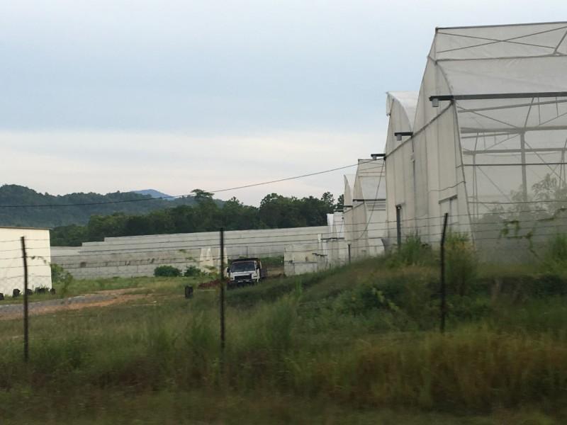 玻大的可持续农业研究所(Instisute of Sustainable Agrotechnology,INSAT)利用玻璃温室(greenhouse)的技术,以研究各类农作物。当中最特别的农作物就是玻璃市的特产香甜芒(Harumanis)了。原先香甜芒的盛产及成熟的季节乃介于四月中旬至六月中旬。在2016年,玻大成功使用玻璃温室的技术,让香甜芒能够全年地盛产及成熟了。