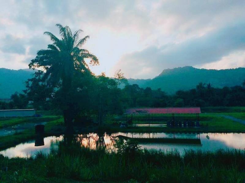 此农业公园(AgroPark)属于丹大日里分校的私有地,让学生可以自己经营农耕与养殖。本校教授连同数百名学生曾于2017年在此处种植6千棵檀香树,创下全马新纪录!