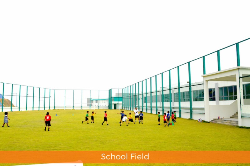 School Fields