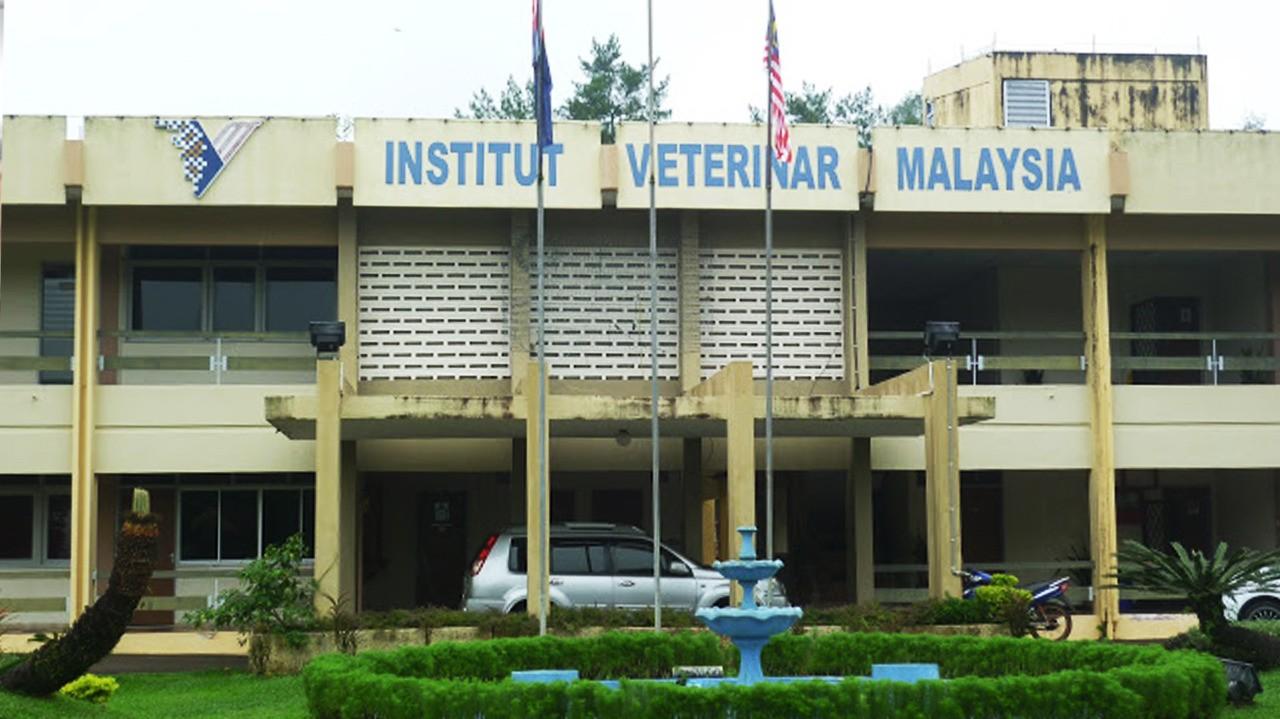 Institut Veterinar Malaysia (IVM)