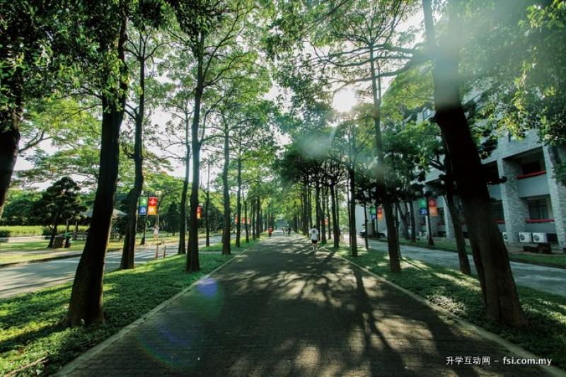 元智一馆清幽而绿意盎然的人行步道,是许多学生晨跑的好去处。