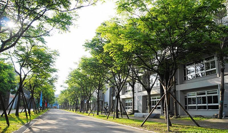 宜兰大学全景,校园内种植茂盛的树木,绿意盎然。